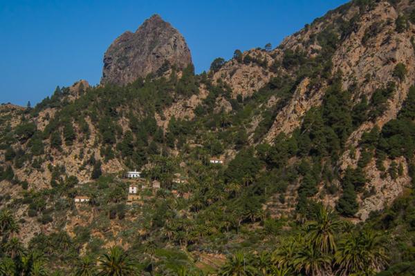 Roque Cano från andra sidan