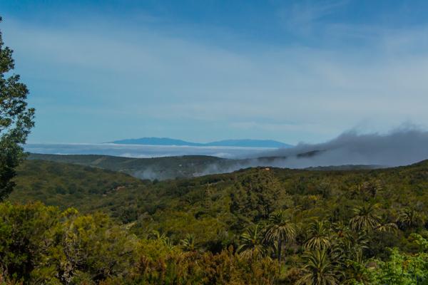 Utsikt mot La Palma