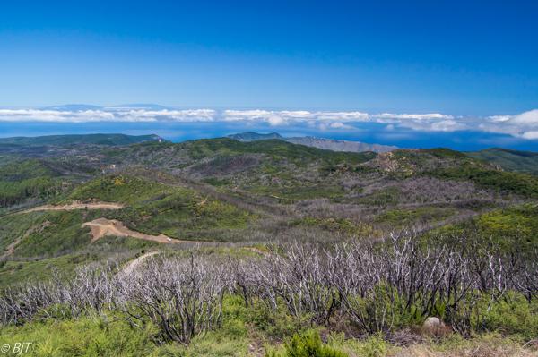 .. och La Palma syns i norr
