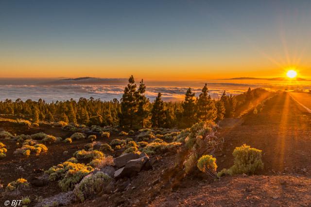 På väg upp till Teide