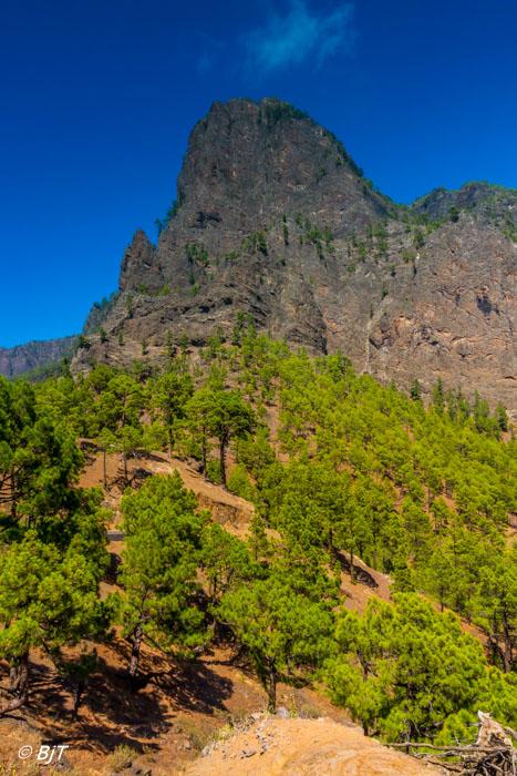 Nationalparken Caldera de Taburiente
